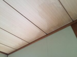 雨漏り天井