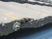 八幡西区 K様邸 外壁・屋根塗装2 屋根カビ