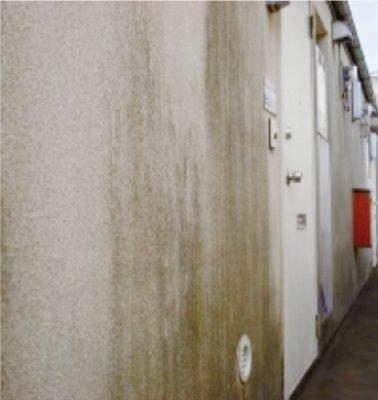防カビ・防藻機能